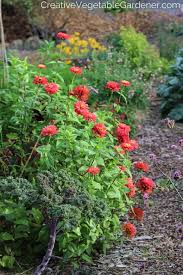 Creative Vegetable Gardens by 760 Best Vegetable Gardening Images On Pinterest Veggie Gardens