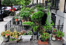 pros and cons of mulching laura rittenhouses gardening journal bag office large size pros and cons renting in harlem stoop website for interior design