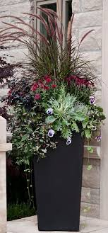 best 25 planters ideas on outdoor potted plants