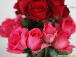 cheap roses 3 ways to get roses cheap wikihow
