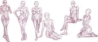 human female anatomy studies by ebilbunnyarmy on deviantart