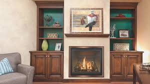 fireplace fresh replacement fireplace doors room design decor