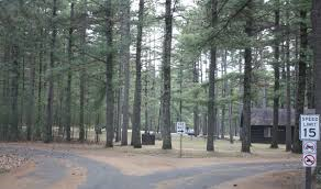 Wisconsin Forest images Black river state forest wikipedia jpg