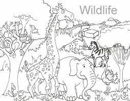 giraffe coloring pages printable printable pages alligator for kids animal zoo zoo coloring page