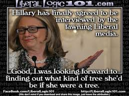 College Liberal Meme Who Is She - meme when hillary finally faces the liberal press