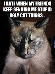 Ugly Cat Meme - i hate when my friends keep sending me stupid ugly cat things
