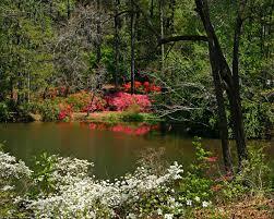 nature springtime free desktop wallpapers for pc u0026 mac 98