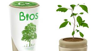 bios urn bios urn will turn you into a tree after you die