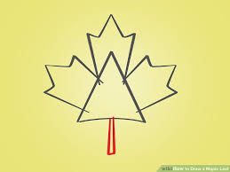 how to draw a maple leaf 12 steps with pictures wikihow