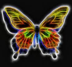 songs about butterflies butterfly