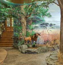 hand painted mural art wildlife trophy room wall murals wildlife mural art