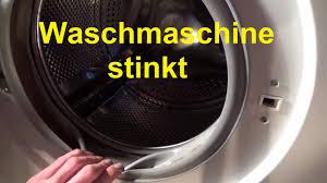 waschmaschine billig waschmaschine stinkt riecht waschmaschine reinigen sauber machen
