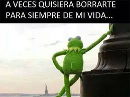 Memes Rana Rene - de marioneta a meme la rana ren礬 viral 盞 antena san luis