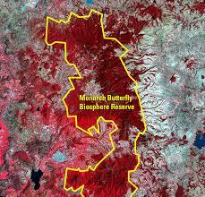 Monarch Migration Map Monarch Butterflies Mexico Earthshots Satellite Images Of