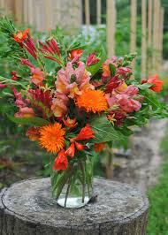 a flower you shouldn t cut flowers are not sustainable meristem
