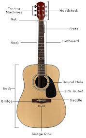 parts of a guitar learn the guitar u0027s anatomy guitar lesson world