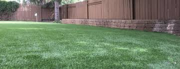backyard putting green in regina sk installation of the month