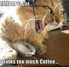 Too Much Coffee Meme - le physique vancouver personal training does caffeine help or