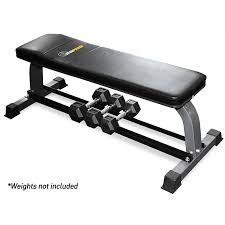 Flat Bench Dumbell Flat Bench Iron Power No 1 Fitness