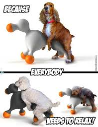 Sex Toy Meme - sex toy for dogs by fraterbbobbo meme center