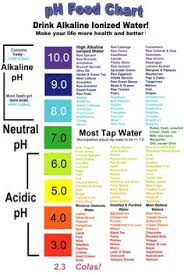 alkaline foods u0026 drinks u0026 why they are actually good for you