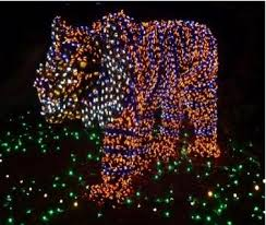 houston zoo lights coupon top christmas events to do around houston