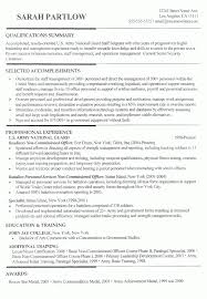 Professional Resume Format Examples by Clever Design Ideas How To Make A Proper Resume 10 Correct Format