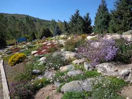 Rock Gardens On Slopes Time Flies And We Re Denver Botanic Gardens
