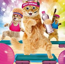 3d holographic birthday card funny cute cats kittens couple cakes