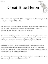Grade 2 French Immersion Worksheets Blue Heron Great Blue Heron Habitat Science Natural Science
