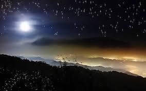 night landscape wallpaper wide woods dark night city mountain