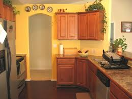 Yellow And Grey Kitchen Ideas by Yellow Painted Kitchen Cabinets Detrit Us