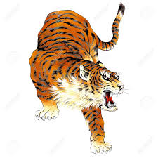 japanese tiger stock photo picture and royalty free image image