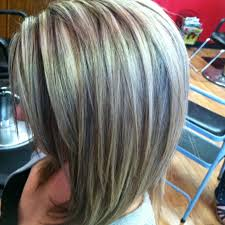 silver hair with low lights balayage light brown and gray dark brown hairs of hair color gray