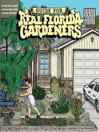 best 25 florida gardening ideas on pinterest florida