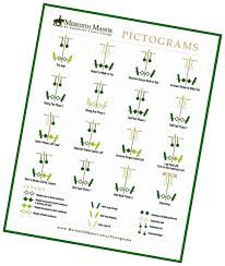 Pictograms Worksheets Pictograms