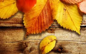 fantasy autumn wallpaper free autumn wallpaper 6790805