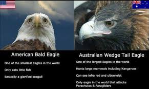 America Eagle Meme - our eagle your eagle imgur