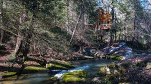 amazing custom tree house pictures and photos morrison treehouse