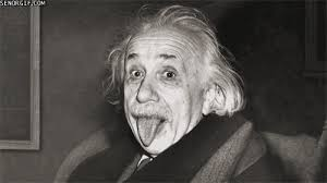 Einstein Meme - einstein gif find share on giphy
