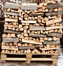 what is the best wood to use for cabinet doors best types of firewood to use indianapolis in mad hatter