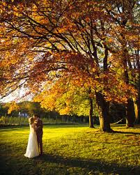 autumn wedding ideas a rustic autumn wedding in a barn in pennsylvania martha stewart