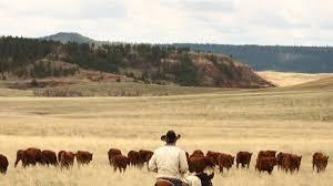 Wyoming Define Traveling images Kara creek ranch sundance travel wyoming that 39 s wy jpg
