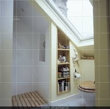 Shower Room by Velux Window Above Toilet In Small Attic Bathroom With Open Shower