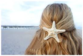 starfish hair clip starfish hair clip on luulla