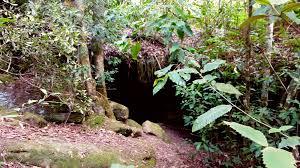 2 lost aussies cave creek walking track hilltop