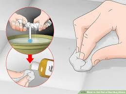 How To Get Rid Of Bed Bugs In Mattress 3 Ways To Get Rid Of Bed Bug Stains Wikihow