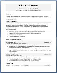 Resume For Job Template Professional Resume Format 16 Template 10 Nardellidesign Com