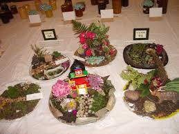 children u0027s class 63 miniature garden on a plate garden u0026 other