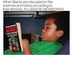 Educated Black Man Meme - food for thought re member yourself fam the melanin man